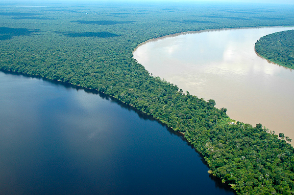 Rio Içá e o Paraná de Jacurapá, Amazonas